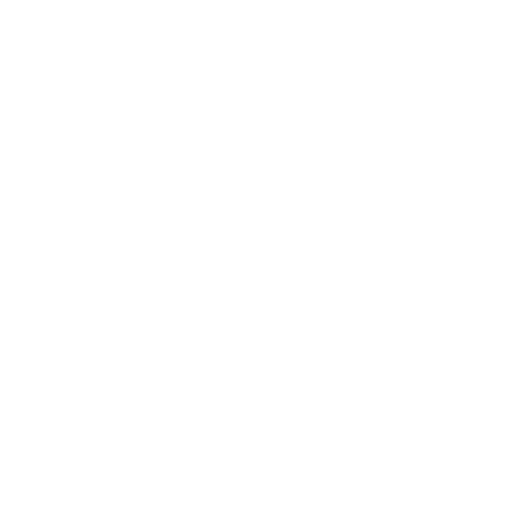 Evolution Usain Bolt auf dein T-Shirt