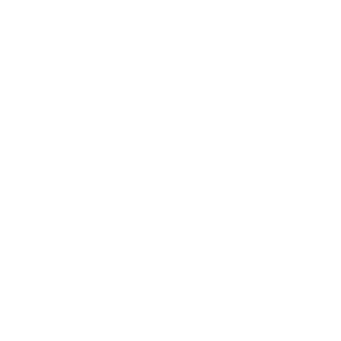 Evolution Motorrad - Evolution