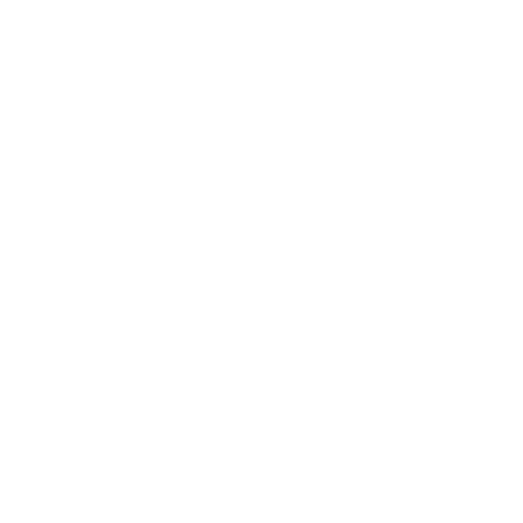 the vokuhila face auf dein T-Shirt